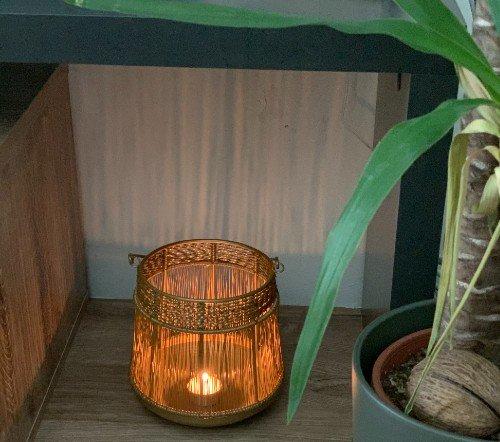 Windlicht 'Goldiny', gouden windlicht, jungle mush,2