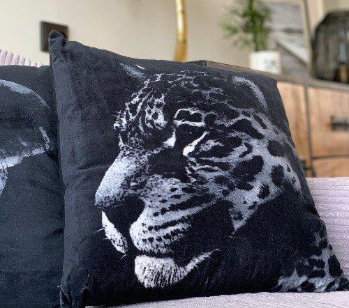 Kussen 'Leopard', sierkussens, dierenkussens, junglemush, trenchic,Decoratie kussen, 45x45 fluweel zwart, 2105209582505-Jungle-2