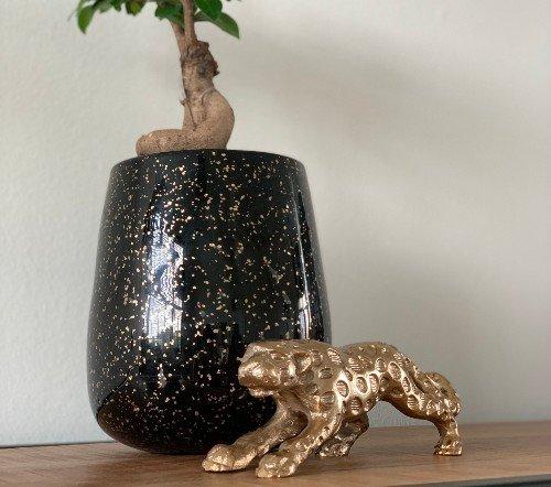 Vaas 'Gold', trendy vaas, glazen vaas, zwarte vaas met goud, trenchic, junglemush, 128436-Jungle-2