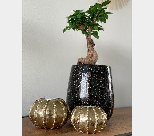 Vaas 'Gold', trendy vaas, glazen vaas, zwarte vaas met goud, trenchic, junglemush, 128436-Jungle-3