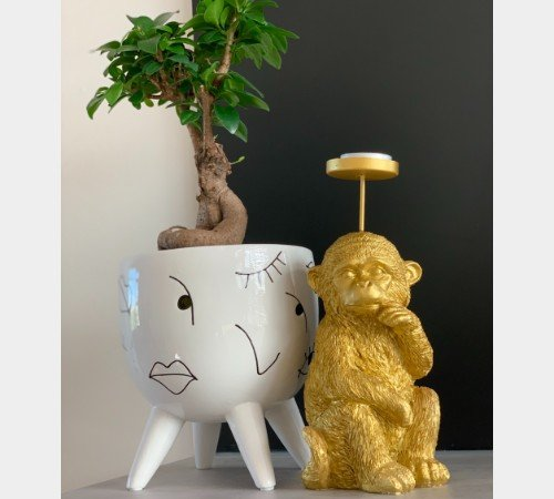 Theelichthouder 'Monkey', trendy theelichthouder aap goud, jungle kaarsenhouder, 36263-065-Jungle, 3